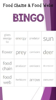 Food Chain and Food Web BINGO