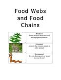 Food Chain and Food Web Lap Folder