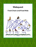 Food Chain and Food Web- WebQuest: