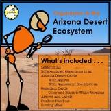 Food Chain and Food Web of an Arizona Desert