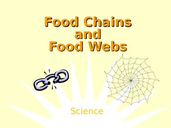 Food Chain and Food Webs