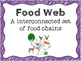 Food Chain and Web Vocabulary Posters and Activities