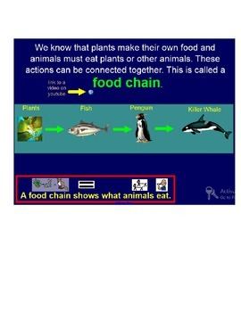 Food Chain lesson for Special Education