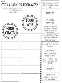 Food Chain or Food Web? Cut and Paste Sorting Activity