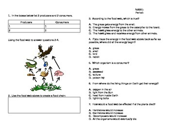 Food Chain/Food Web Quiz