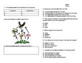 Food Chain/Food Web Quiz