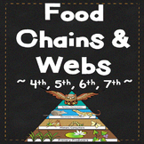 Food Chains and Food Webs ~ Food Chain Activity and Worksheets