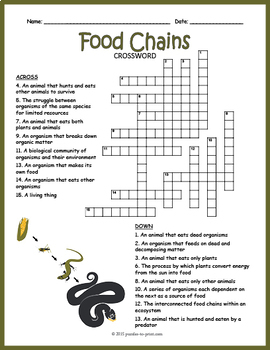 Food Chain Crossword Puzzle