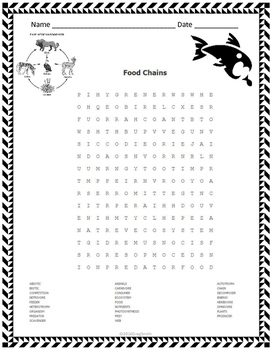 Food Chains Word Search
