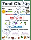 Food Chains Anchor Chart