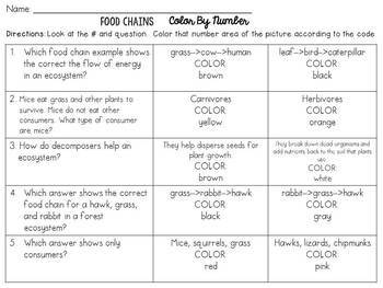 Food Chains Color-By-Number