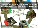 Food Chains, Ecosystems, Water Cycle, and Decomposers: Graphic Organizers Gr 3-5