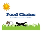 Food Chains / Energy Chains