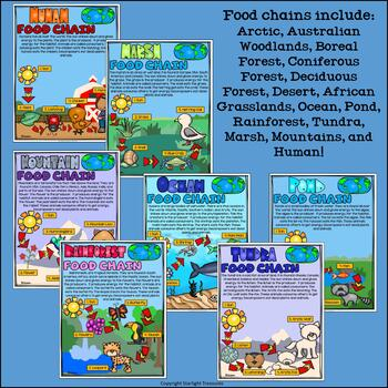 Food Chains Fact Sheets: Arctic, Desert, Forest, Ocean, Tundra, and More!