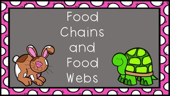 Food Chains Food Web PowerPoint