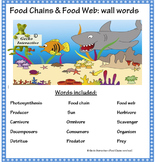 Food Chains word wall set