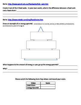 Food Chains, Food Webs, Energy Pyramid - Web Quest