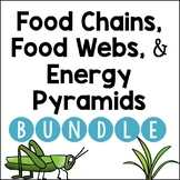 Food Chains, Food Webs, Energy Pyramids: BUNDLE
