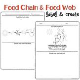 Food Chains & Food Webs Mini Science Activity
