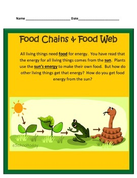 Food Chains & Food Webs STUDY GUIDE 4th Grade Science