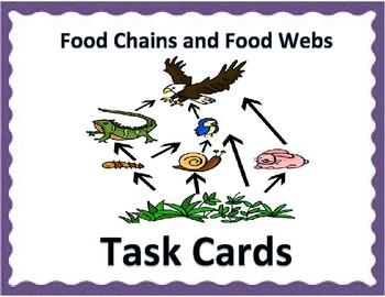 Food Chains & Food Webs TASK CARDS