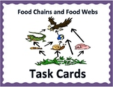 Food Chains & Food Webs TASK CARDS