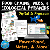 Food Chains, Food Webs, and Ecological Pyramids PowerPoint, Notes, and More!