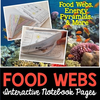 Food Webs Interactive Notebook Pages