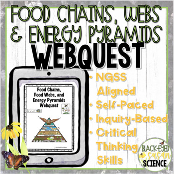 Food Chains, Food Webs, and Energy Pyramids Webquest