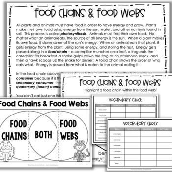Food Chains & Food Webs for Upper Grades