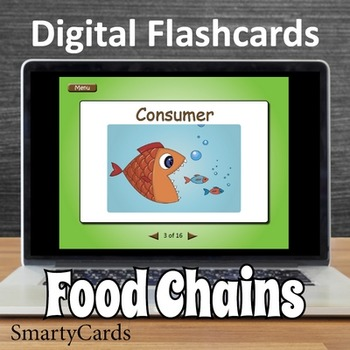 Interactive Food Chains Flashcards
