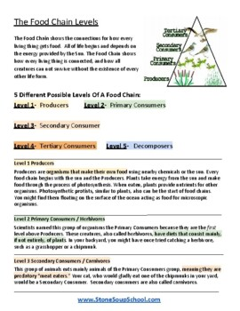 """3rd - 8th Grade  """"Food Chains"""" - Students with Autism -  Science"""