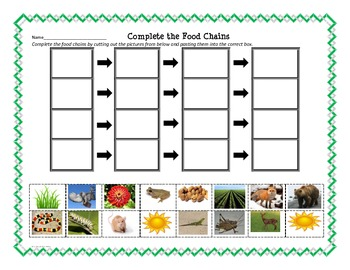 Living Things * Food Chains and Producers/Consumers