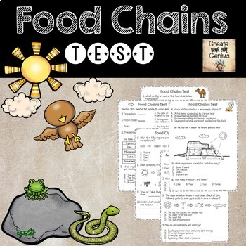 Food Chains Mega Bundle