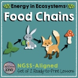 Food Chains Only - 2 Lessons
