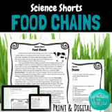 Food Chains Reading Comprehension Passage