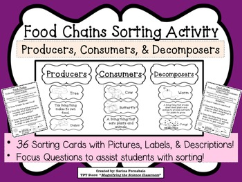 food chains sorting activity game about by magnifying the science classroom teachers pay. Black Bedroom Furniture Sets. Home Design Ideas