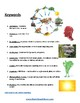 3rd - 8th Food Chains - Students with Traumatic Brain Injuries - Science