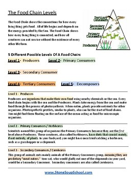 """3rd - 8th Grade - """"Food Chains"""" - Students w/ Physical Disabilities -  Science"""