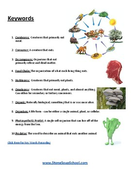 Food Chains - K - 8 - Students with Psychiatric Disabilities - ESSA - Science