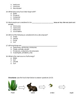 Food Chains Test - 3rd grade VA
