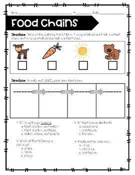 Food Chains Test