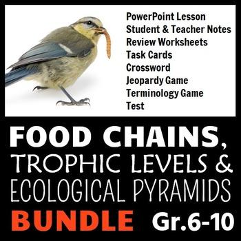 Food Chains - LESSON BUNDLE {Editable}