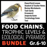 Food Chains BUNDLE {Editable}