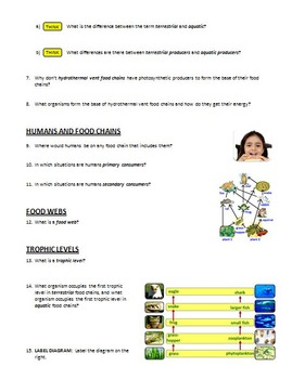 Food Chains - PowerPoint Worksheet {Editable}