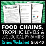 Food Chains - Review Worksheet {Editable}