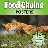 Food Chains Vocabulary Posters