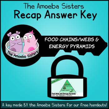 Food Chains/Webs, Energy Pyramid Recap Key by The Amoeba Sisters (Answer Key)