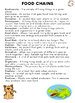 Food Chains Word Search Activity