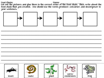 Food Chains Writing Activity